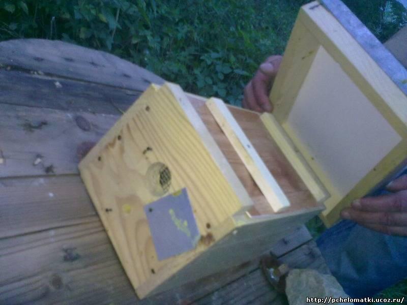 Как сделать нуклеус пчел 40